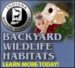 Learn about Backyard Wildlife Habitats