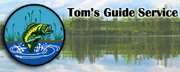 Tom's Guide Service